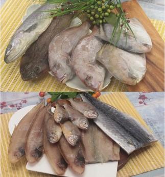 반건조생선 도미/민어/양태/병어/제사음식 모음